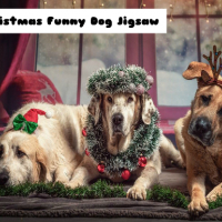 Christmas Funny Dog Jigsaw